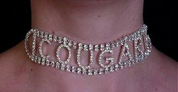 COUGAR/SLAVE Collar Rhinestone Sexy Hot Dancer Submissive